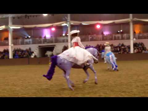 BRC SEIB Quadrille Final 2017 - Cornwall TREC Mary Poppins
