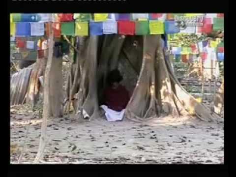 The Boy With Divine Powers - Nepali Buddha Boy - Part 5