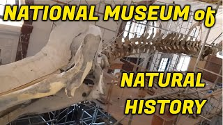 EXPLORING: Philippine National Museum of Natural History
