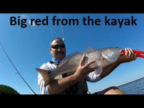 Flats Fishing For Big Redfish And Trout On Pine Island Sound