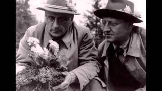 Anton von Webern ~ Zwei Lieder opus 19 (1926)
