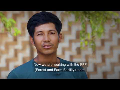 Evaluation of FAO's contribution to Myanmar (extended)