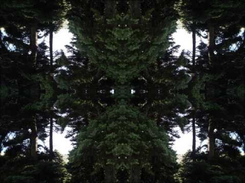 Tranceplant - Synthetic