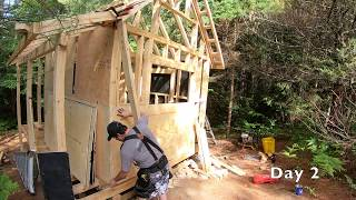 Tiny House Wall Building. Tiny House Plywood Walls.