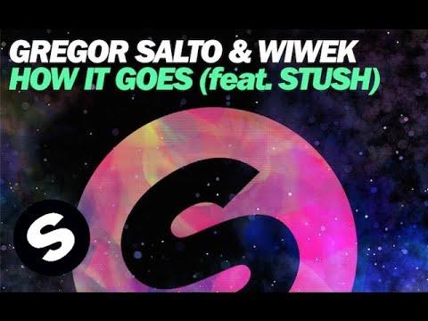 Gregor Salto & Wiwek - How It Goes (Feat. Stush)