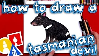 How To Draw A Realistic Tasmanian Devil