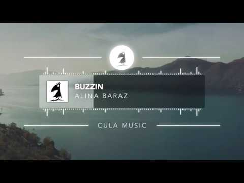 Alina Baraz - Buzzin