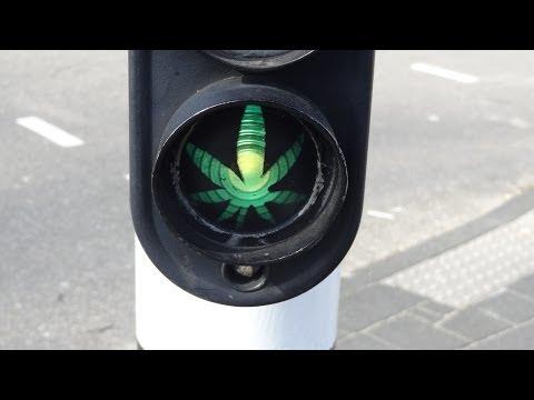 Hash Marijuana Drugs Dope Traffic Light
