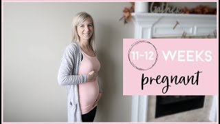 11 - 12 WEEKS PREGNANT WITH TWINS | GENDER, ULTRASOUND PICTURES, NEW SYMPTOMS & BELLY SHOT