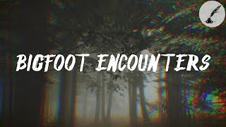 3 Terrifying Bigfoot Encounters Reported By Subscribers | Real Paranormal Stories