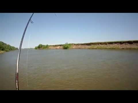 рыбалка на ахтубе осенью уловистые места