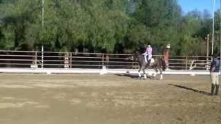 USEF Developing Rider Training with David O