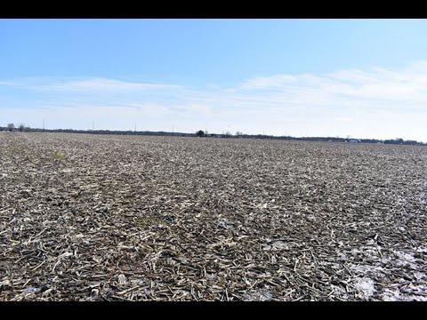 Update On Farm Land Values In Illinois And Iowa - Sullivan Auctioneers