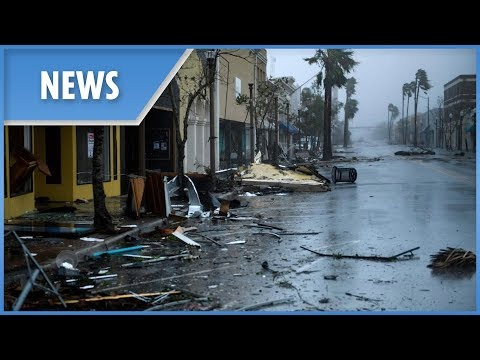 Dr. Shane - 15th Street After Hurricane Michael