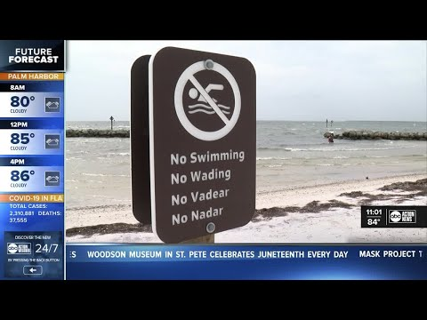 Changes made at Apollo Beach Preserve following deaths of father, son and Good Samaritan