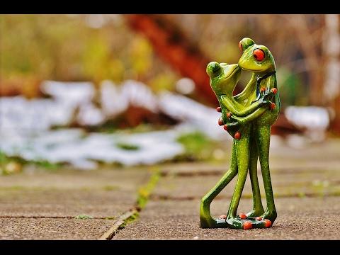Поздравление с днем святого Валентина (универсальный шаблон). - Лучшие приколы. Самое прикольное смешное видео!