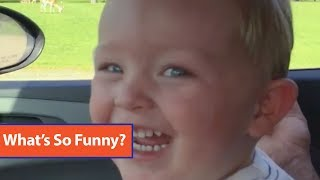Toddler Laughs At Ostrich Eating