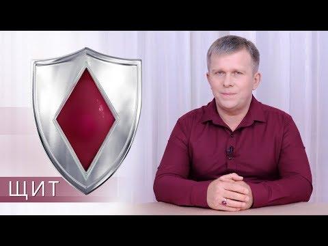 The Shield (English Subtitles)
