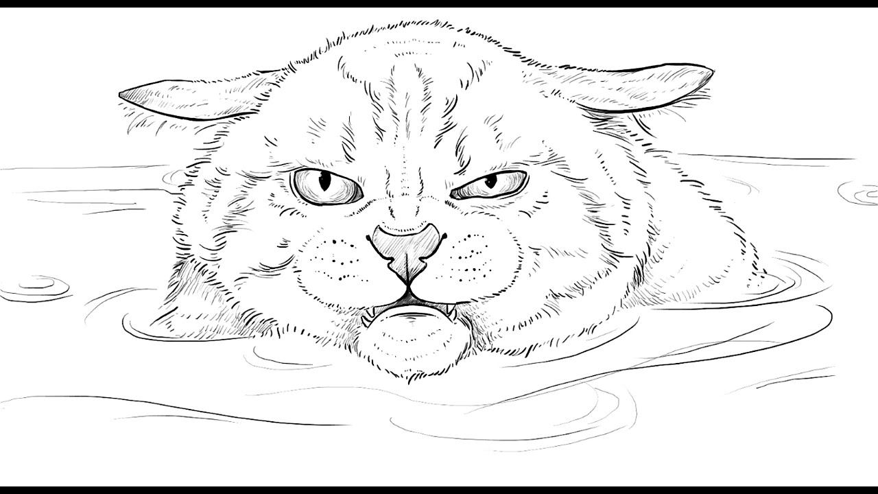 How to draw Angry Cat in the Water - YouTube