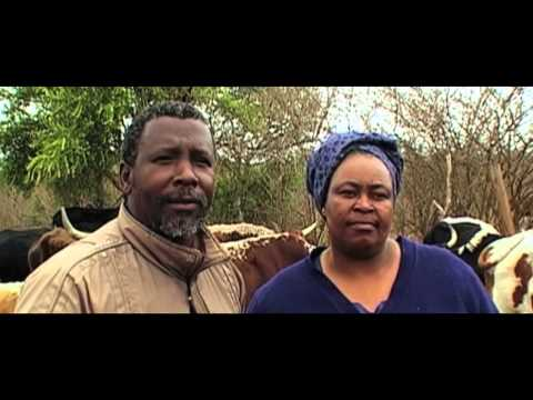 Swaziland: The King and the People