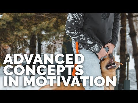 Advanced Concepts in Motivation with Michael Ellis I Trailer
