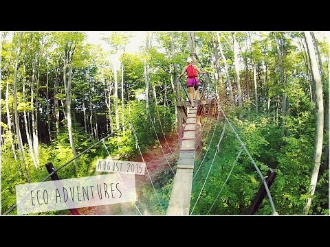 Eco Adventure Tour/Scenic Caves - Zip Lining and Tree Top Trekking