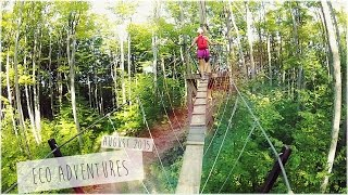 Eco Adventure Tour/Scenic Caves - Zip Lining and Tree Top Trekking