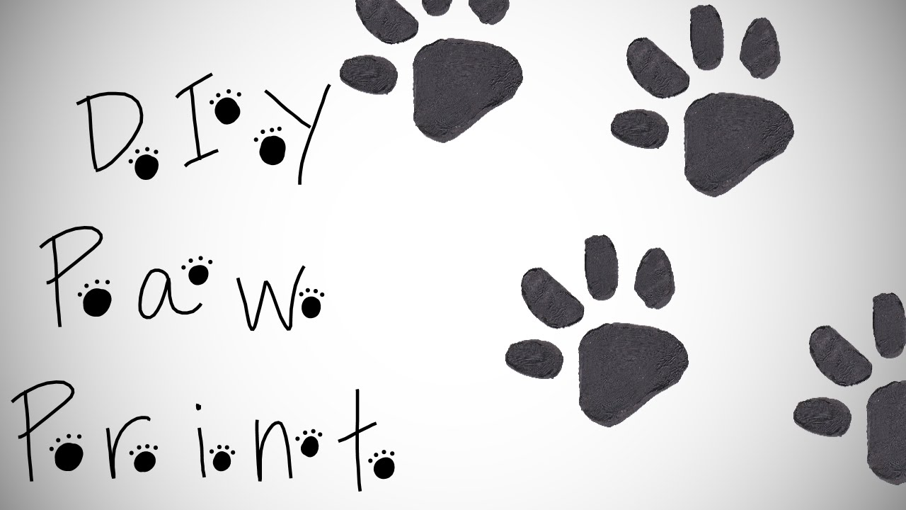 diy paw print how to make a paw print stamp youtube