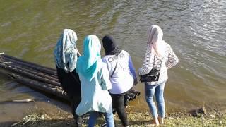 Download Video Anak kuliahan mesum di danau MP3 3GP MP4