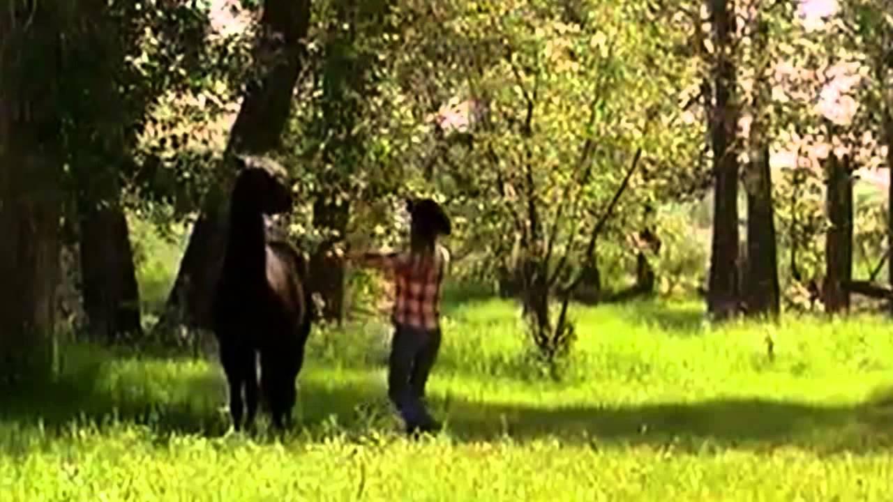 Heartland - Amy and Spartan - YouTube