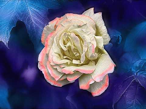 Ralph Vaughan Williams - Serenade to Music