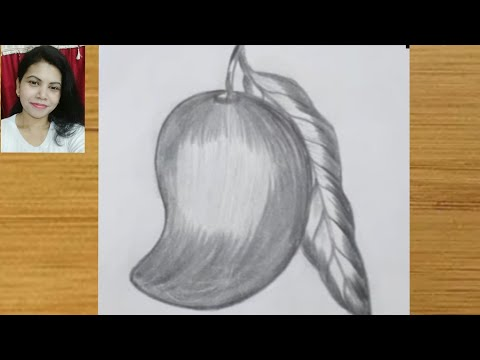How To Draw A Mango By Pencil Sketch For Beginners For Kids Step By Step Youtube