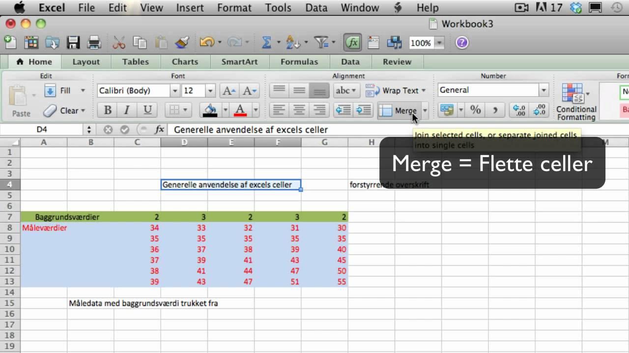 Excel Video 02: Brugen af Celler