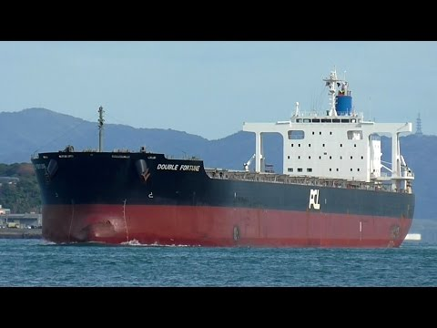 DOUBLE FORTUNE Pacific Carriers Limited bulk carrier