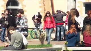 Эксперимент TUT.BY. Легко ли в Минске украсть велосипед