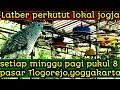 Perkutut Lokal Latber Setiap Minggu Pagi Pasar Tlogorejo Yogyakarta  Mp3 - Mp4 Download