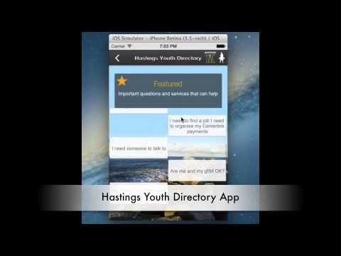 Youth Advisory Council (YAC) 2013
