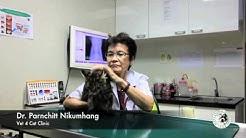 Vet 4 Cat Clinic: Ep6 โรคไตในแมวเด็ก