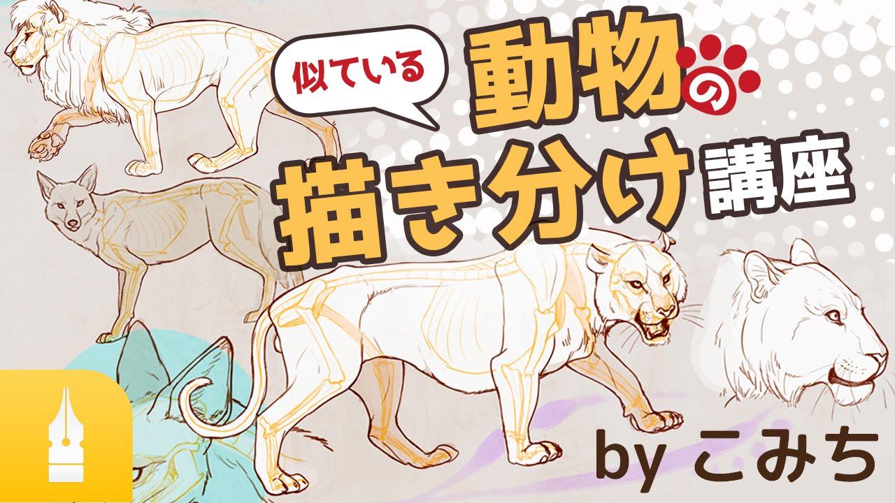 楽しくマスター!似ている動物の描き分け講座 by こみち|漫画・イラスト