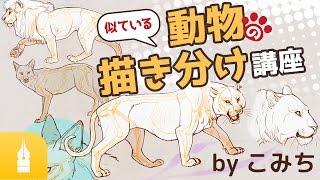 楽しくマスター!似ている動物の描き分け講座 by こみち|漫画・イラストの描き方講座:お絵描きのPalmie(パルミー) thumbnail