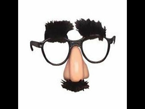 Funny Little Girl Really Likes Groucho Glasses