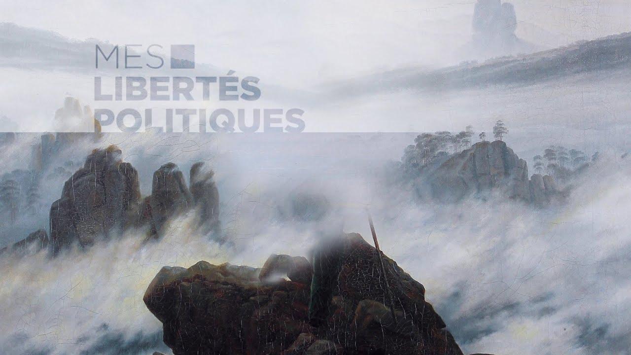 Mes Libertés Politiques : semaine du 27 au 31 juillet 2020