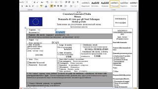 Заполнениние анкеты на Шенгенскую визу на примере Италии 2017 год
