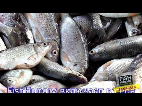 феромоны для рыбы активатор клева