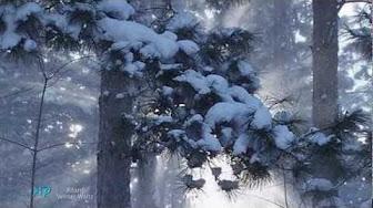 Mix – Winterbilder