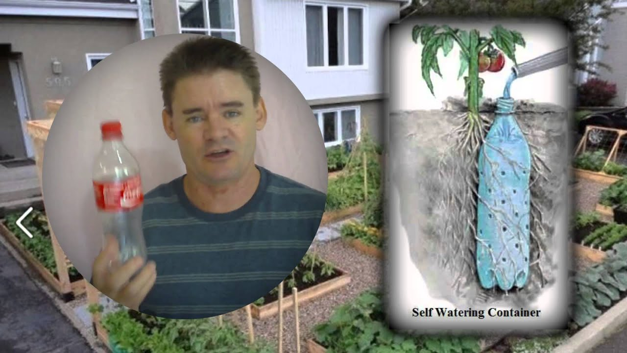 underground self watering recycled bottle system youtube