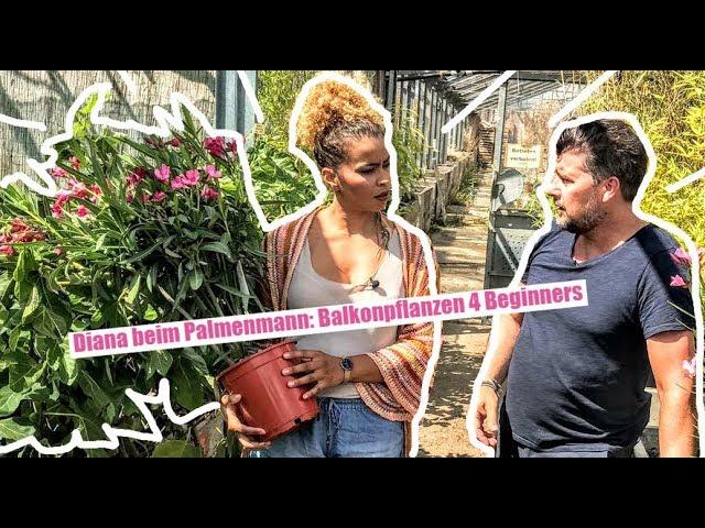 Balkonpflanzen 4 Beginners mit Diana