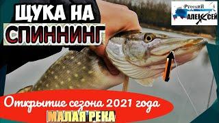 РЫБАЛКА НА СПИННИНГ Открытие сезона 2021 Ловля щуки и плотвы на малой реке весной в Тверской обл