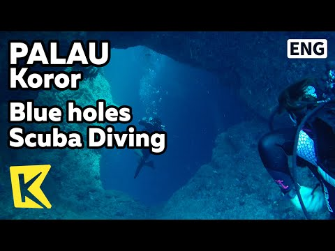 【K】Palau Travel-Koror[팔라우 여행-코로르]블루홀, 바다 동굴 스쿠버다이빙/Blue Holes Scuba Diving/Sea Cave