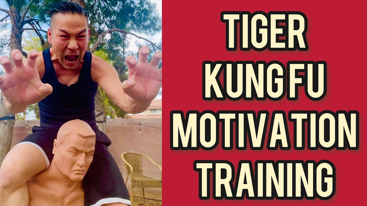 Download real timing kung fu class / motivation , inspioritional tiger training / tiger claw , kick , punch